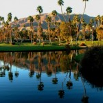 Palm Springs Homes & Estates for Sale
