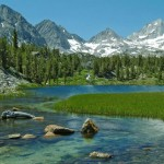 Mammoth Lakes - Homes & Estates for Sale